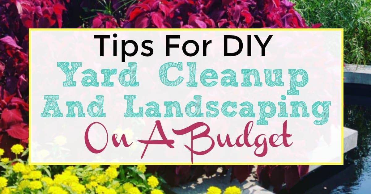 Tips For DIY Yard Cleanup And Landscaping On A Budget