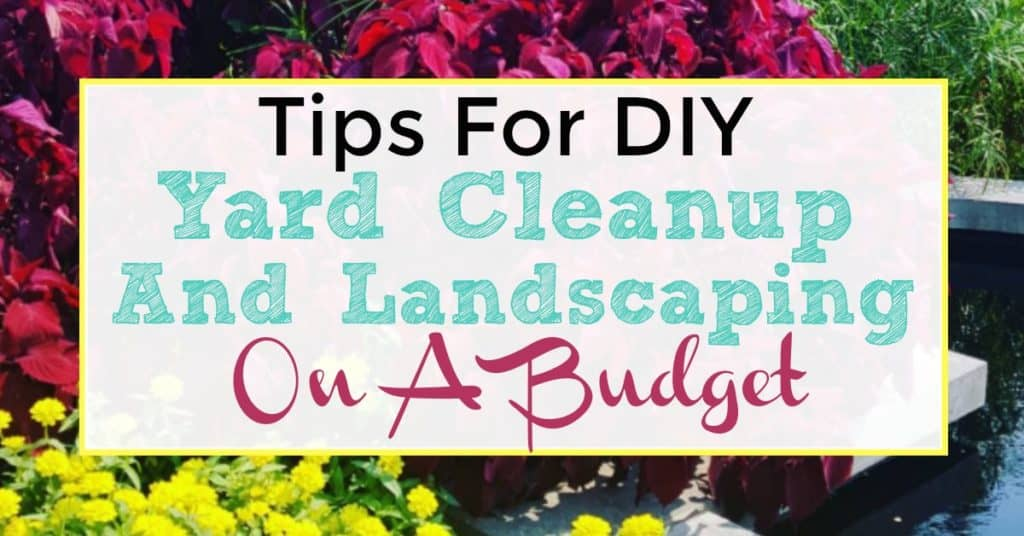 Tips For Diy Yard Cleanup And Landscaping On A Budget I Like To