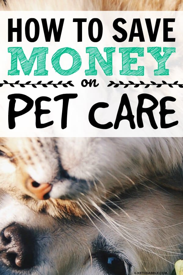 How to save money on pet care. frugal ways to save money on pet care. Cheap all natural products for your pet. #savemoney #frugalliving #petcare