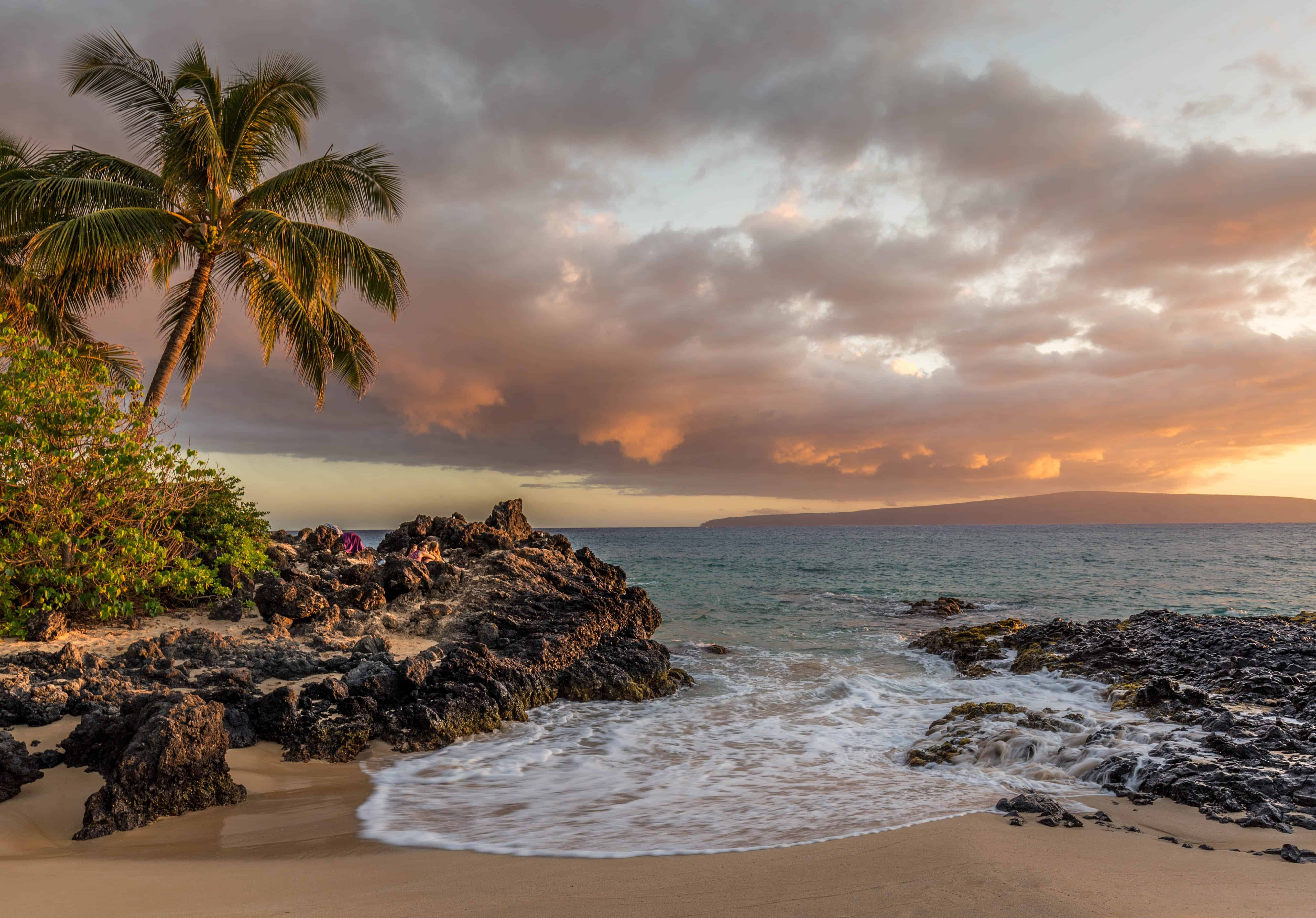 Beach scene with palm trees and rocks.