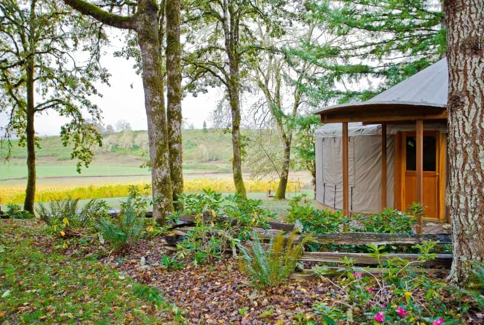 Oregon Clamping Yurt for rent on airbnb