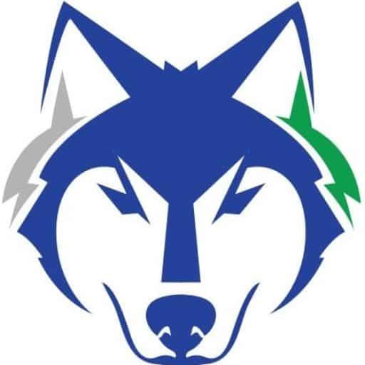 Financial Wolves Logo